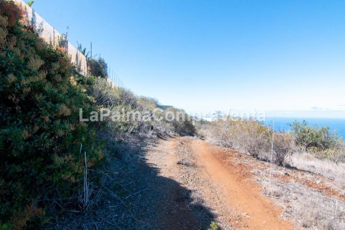 Property photo 42934042_2a769208400af6257bfa9eb4e4ea5773.jpeg