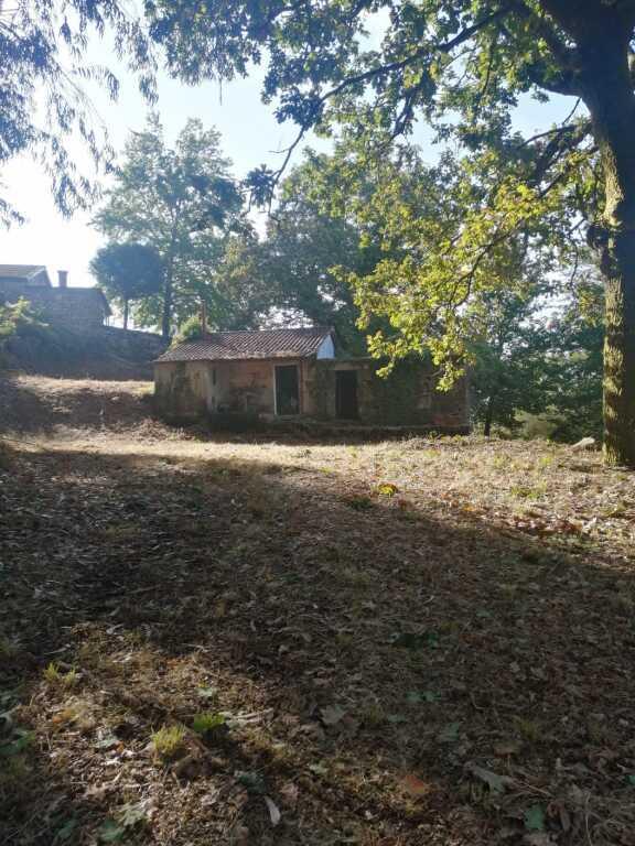 Property photo 44533438_f839d756e89e698b16c08771d3e44610.jpeg